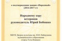документ-подтверждение Народный