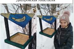 07. Днепровская Анастасия