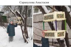 46. Сарапулова Анастасия